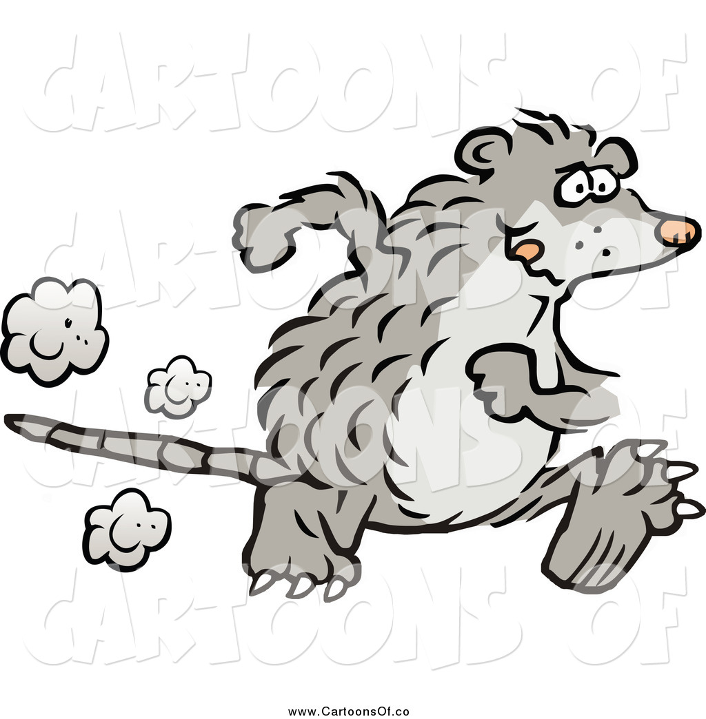The Gallery For --> Opossum Clipart