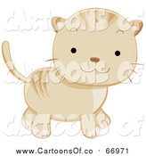 Vector Illustration of a Cute Beige Kitten by BNP Design Studio