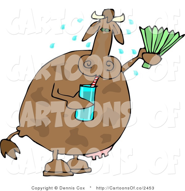 Cartoon Illustration of a Sweaty Cow Drinking Water