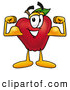 Cartoon Illustration of a Smiling Red Apple Character Mascot Flexing His Arm Bicep Muscles by Toons4Biz
